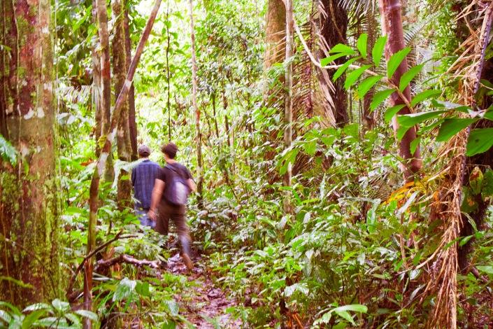 spedizione in amazzonia