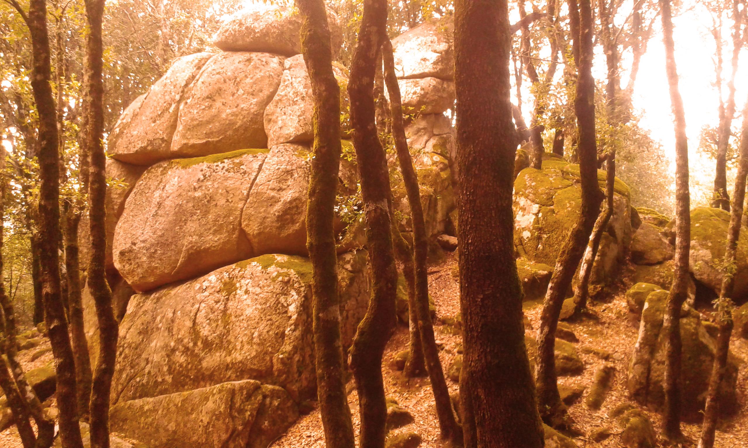 Megaliti di Nardodipace