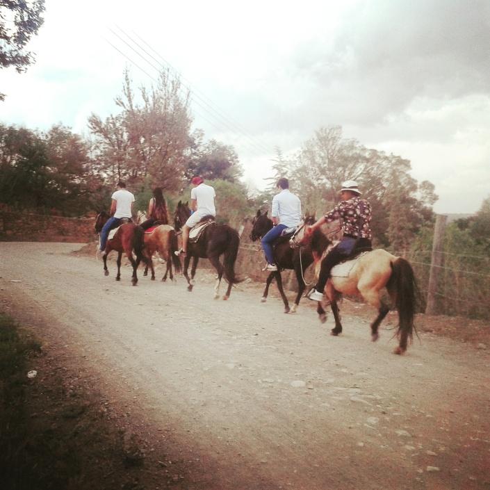 blog crescita personale meditazione spiragli di luce cavalli al tramonto